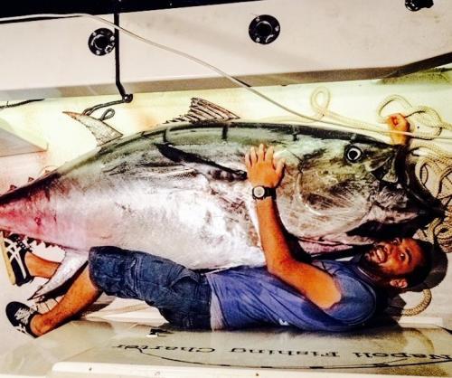 TONNO RECORD 350 kg